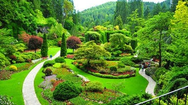 Um dos jardins do The Butchart Gardens. Lindo, né? Minha mãe iria amar rs