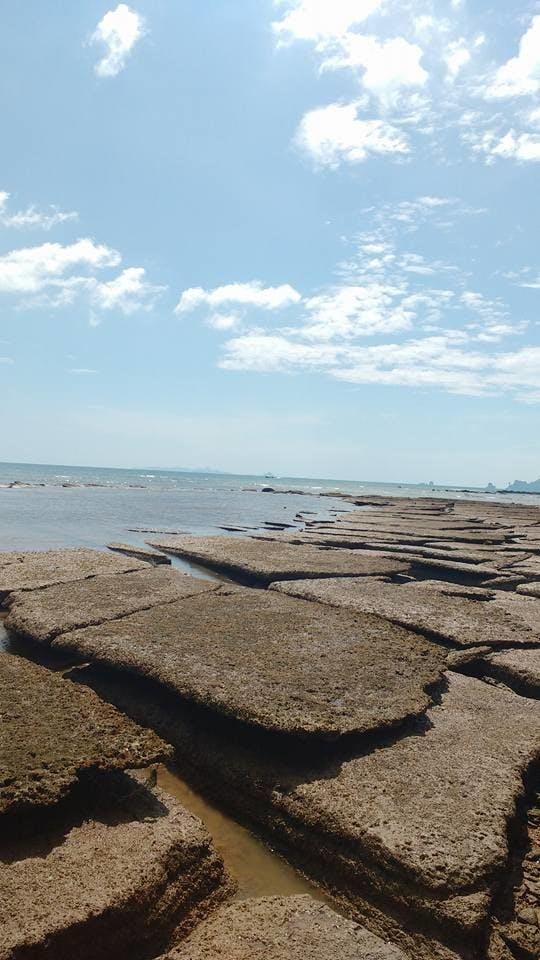 Paredão de concreto no meio da praia? Não, apenas um cemitérios de conchas mesmo.