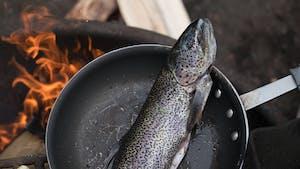 Uma das comidas tipicas dos estados unidos é o salmão selvagem do alasca.
