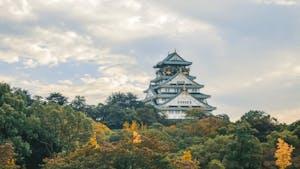 Castelo de Osaka ao fundo de uma floresta.